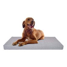 Orthopedic Foldable Memory Foam Modern Plush Designer OEM Available Dogs New Pet Bed