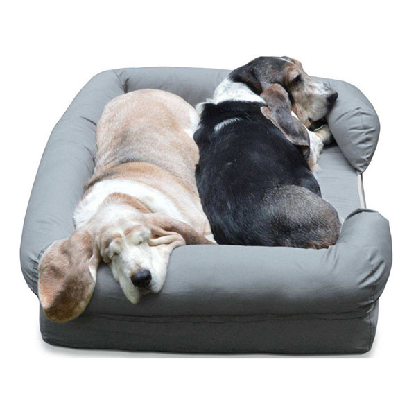 What is the benefits of memory foam dog bed?