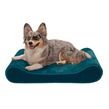 Pet Elevated Furniture Large Suppliers Washable Memory Foam Luxury Dog Bed