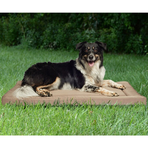 Popular Custom Orthopedic Large Waterproof Memory Foam Dog Bed