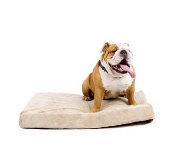 Cheap New Arrival High Quality Factory Memory Foam Wholesale Factory Pet Bed